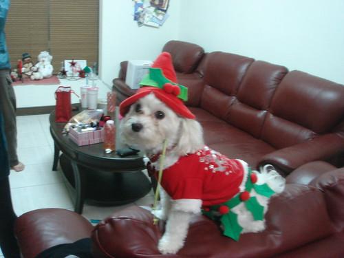 Gilby, the Elf