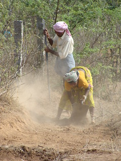 Working India's rural land