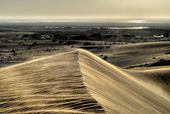 Sand Dunes (aZ-Saudi) Tags: nature landscape gold interesting sand nikon desert dunes arabic oasis saudi arabia d200 hdr البر ksa alhasa طبيعة صحراء طعس arabin theunforgettablepictures بلاحدود الرياح الرمال الاصفر هبوب المصافير كثبانرملية تطاير ِarabs