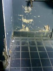 toilettes du bâtiment B