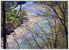 Buffalo River Spring (hz536n/George Thomas) Tags: blue trees green yellow river spring 2008 canonef1740mmf4lusm cs3 canon30d digitalcameraclub p1f1