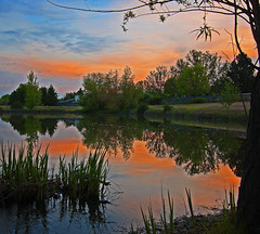 Pinkish Blue And Orange Sunrise (mikenpo) Tags: blue sky reflection sunrise mirror brilliant~eye~jewel beautifulsecrets awesomesunrisereflection