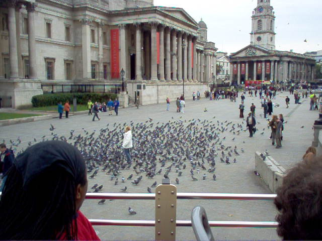 Europe 2005 London Museums and Pidgeons