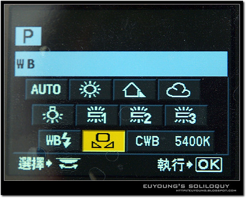 e420_menu6 (by euyoung)