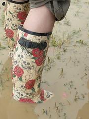 Wellies 3 (Annie Bungeroth) Tags: festival sunrise mud celebration wellies