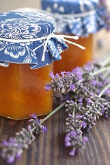 Apricot Jam with Lavender (2/2) (Thorsten (TK)) Tags: blue summer food orange cooking fruit breakfast herbs sweet lavender jar apricot jam fruity apricots foodphotography preserving foodpresentation foodstyling thorstenkraska germanfoodphotography
