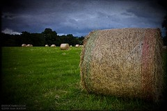 Just another hay bale shot (Sean Bolton (no longer active)) Tags: wales cymru hay brecon bale powys oldlook seanbolton ffotocymrucouk