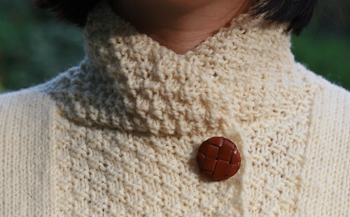 collar and button detail (by mintyfreshflavor)