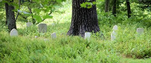 Cemetery Along Pine Creek Trail