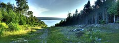 Trail to the lake Pan (Zach Bonnell) Tags: newfoundland panoramic canonxt hdr gander tamron1750