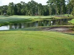 Golf with Steve