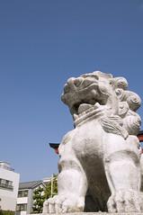 鶴岡八幡宮, 鎌倉