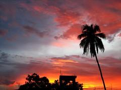 Amazing sky 5