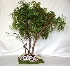 1/12 Scale Tree For Miniature Dollhouse (Golden Unicorn Miniatures) Tags: flowers plants tree garden landscape miniatures miniature greenery prop dollhouse dollshouse onetwelfthscale cdhm goldenunicornminis
