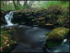 (Manu gomi) Tags: wood naturaleza fall nature water ir agua stream olympus bosque otoo e300 polarizer zuiko oly polarizador ppcc waterquot manugomi quotsiliky 236985asd