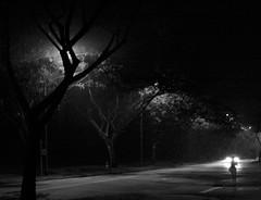 Help Is Coming (patrickkwk) Tags: trees car walking stranger 1740mm f4 1740 f40 llens canon400d usml l1740mm 17canon 400d1740mmf40l lensusm