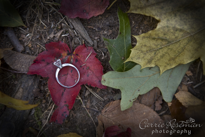 Ring-leaves