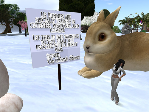 bunny-war-signs