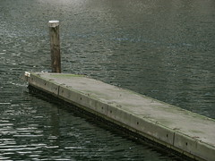 A Lonely Autumn Day (westrock-bob) Tags: ocean copyright lake canada water vancouver canon photography photo dock bc image pics picture bob pic columbia photograph abandon wharf falsecreek british lonely granvilleisland allrightsreserved westrock kanada unused kanata cuthill s5is canons5is westrockbob bobcuthillphotographygmailcom bobcuthill