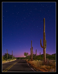 Sometime Around Midnight (Dan.Heacock) Tags: road park street light arizona cactus portrait sky southwest west dan night cacti painting stars point landscape nikon shot tucson path awesome national saguaro vantage d300 heacock azflora danheacock thedan86