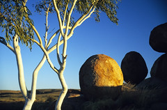 Devils Marbles - Tennant Creek - Australia (ladigue_99) Tags: hiking nt australia hike erosion boulders geology redcenter northernterritory devilsmarbles geologia tennantcreek erosione anawesomeshot ladigue99