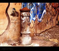 TMax66 graffiti ;-) (Ev@ ;-)) Tags: italy rome colors graffiti loso murales abigfave colorphotoaward globalvillage2 globalartists dedicataatmax66 ernasonesenzanaso evt
