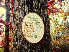 the owls are not what they seem (KnitXcorE) Tags: forest woodland woods handmade embroidery craft twinpeaks owl sublimestitching crafty