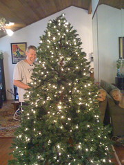 Zachary and Chris put up the lights (Web-Betty) Tags: christmas chris holiday christmastree zachary decorate