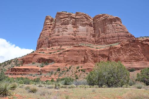 Arizona 2011 538