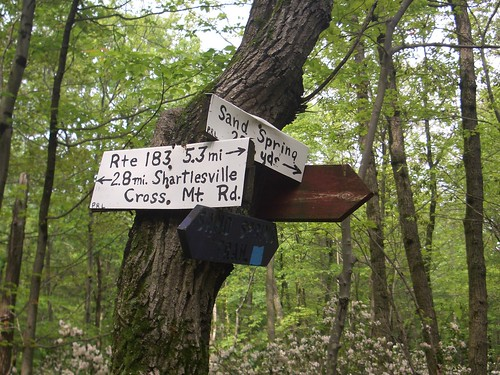 Amalgam of Appalachian Trail Signs