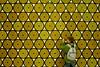 Circles of life (the bbp) Tags: game yellow kid child play giallo darts gioco freccette bambino biennaledivenezia thebbp padiglionescandinavia