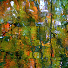 Colors Reflection In My Wild River …!!!