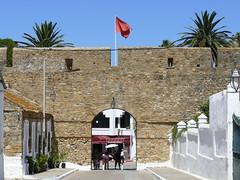 P1020821 (steveandmadiha) Tags: morocco asilah