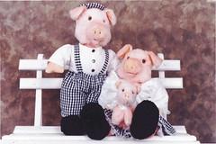 Casal de porcos - G32 (Moldes videocurso artesanato) Tags: de porcos casal g32