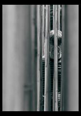 Voyeur (Saskia B) Tags: creepyguy explored abigfave theperfectphotographer goldstaraward araquem meettheloveofmyliife ofcoursenotreallycreepy thisisonlyforfun