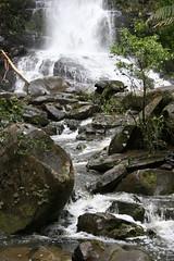 Oz3 266 Erskine Falls (Gillian in Brussels) Tags: nature coast waterfall nationalpark australia shore greatoceanroad erskinefalls greatotwaynationalpark