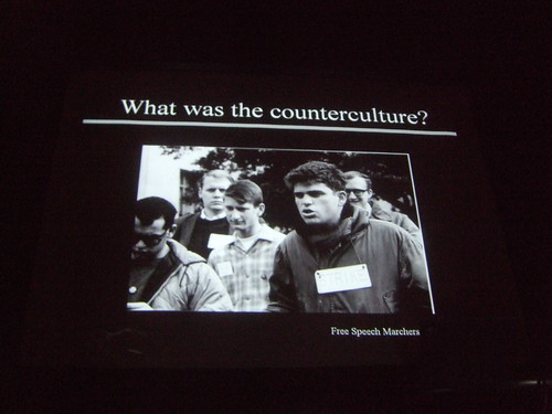What was the counterculture?