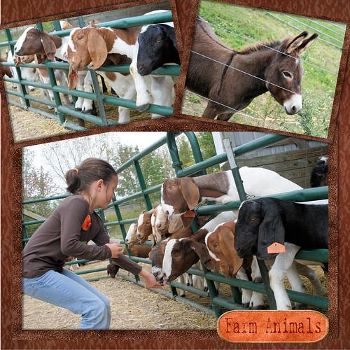 092708 Leeds Farm 10