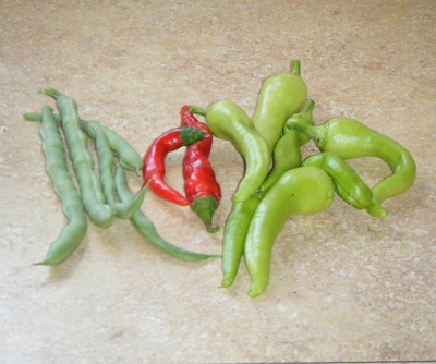 Our latest harvest.