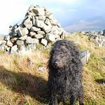 An càrn air mullach Beinn na Seamraig thumbnail