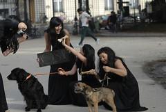 _TED0230 (susanjoly) Tags: paris france dogs stars theatre crazies playacting parcmanceau