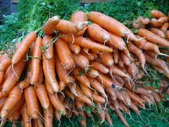 Carrots at the Farmer's Market (knightbefore_99) Tags: food green vancouver hall farmers market vegetable fresh wise carrot organic veggie eastvan