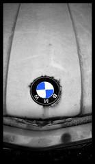 bimer badge (t.kvaszta) Tags: old classic car out ride alpina retro badge rusted bmw bimer