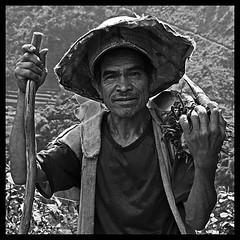 Viejo seor de las terrazas de arroz de Pula, Filipinas... ([cation] (totally off...)) Tags: filipinas banaue batad luzon pula retrato portrait seor man old viejo vieux sourire sonrisa smile ride pauvrete pobreza gentillesse blackwhite bw bn nb terrazas arroz ricefields philippines sombrero chapeau hat ojos yeux eyes regard mirada look nikon d300 cation