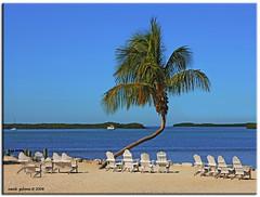 Key West (iCamPix.Net) Tags: beach florida miami relaxing resort explore palmtrees fav favourite soe canonef2470mmf28lusm floridakeys mostviewed cubism monroecounty ulimateshot ysplix mostwatched vosplusbellesphotos cannoneos1dsmarkiii icampixtechnologyleveli floridakeysvacationrentals moradabaybeachcaf
