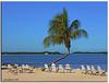 Key West (iCamPix.Net) Tags: beach florida miami relaxing resort explore palmtrees fav favourite soe canonef2470mmf28lusm floridakeys mostviewed cubism monroecounty ulimateshot ysplix mostwatched vosplusbellesphotos cannoneos1dsmarkiii icampixtechnologyleveli floridakeysvacationrentals moradabaybeachcafé