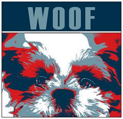 Wonton poster