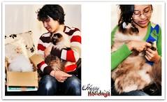 Yippie! (Nazra Zahri) Tags: family winter portrait pet animal japan persian nikon holidays sb600 picnik himalayan okayama d300 dropshadow bfff tamronspaf1750mmf28xrdiiildasphericalif 1750mmf28
