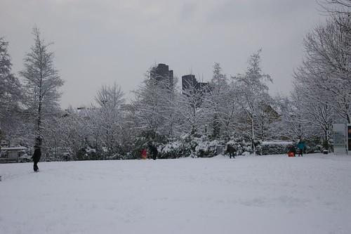 Snow_2009-71