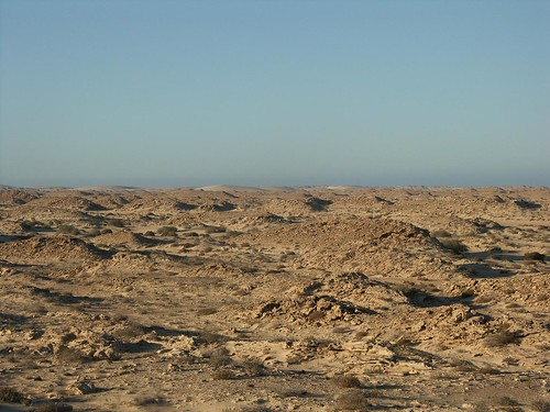 Western Sahara flickr photo